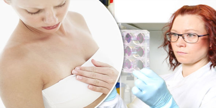 Detecting Breast Cancer In The Early Stage